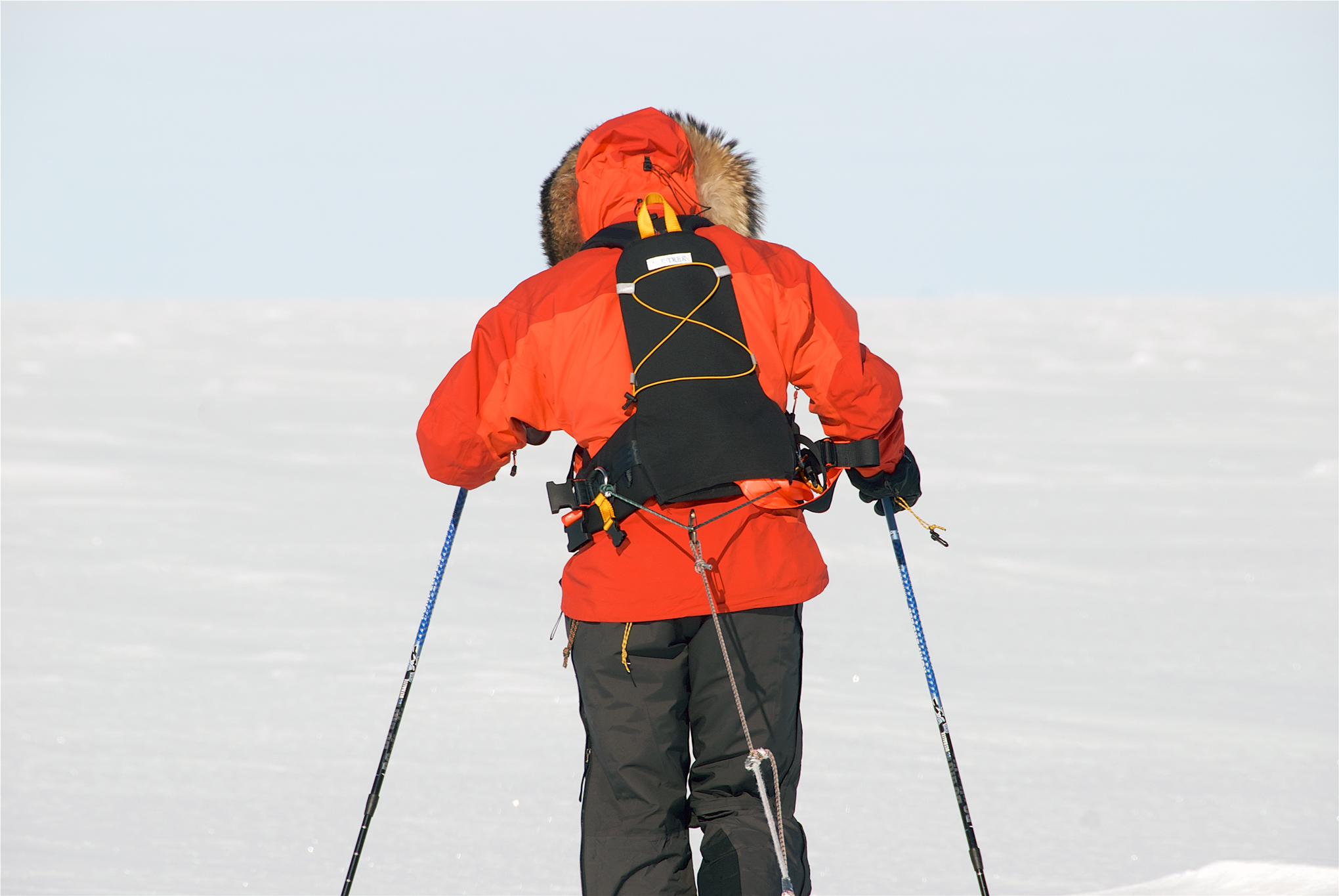 ATLAS Sled Harness - Icetrek Polar Expeditions